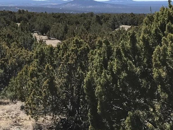 null bed null bath Vacant Land at  Idle Rnch Concho, AZ, 85924 is for sale at 40k - 1 of 11
