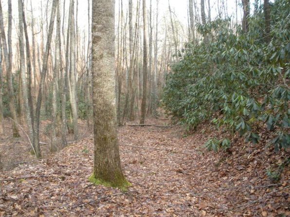 null bed null bath Vacant Land at  Prcl F/G Tunnel Mountain Rd Sylva, NC, 28779 is for sale at 95k - 1 of 4