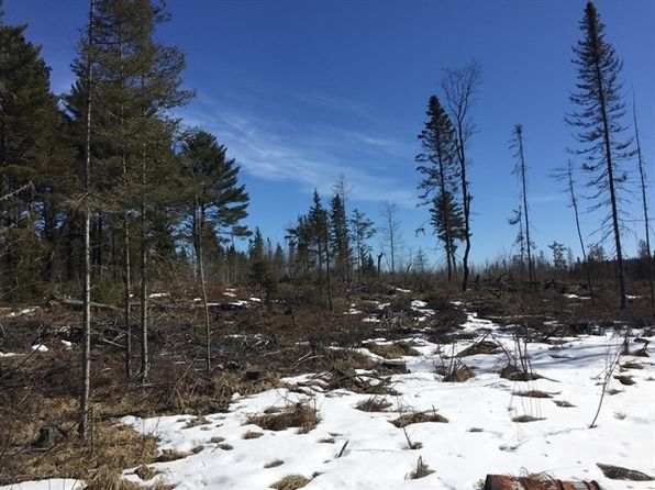 null bed null bath Vacant Land at  Tbd Mine Rd Gibbs City Swd 26071sa009 46.2194n 88. Iron River, MI, 49919 is for sale at 57k - 1 of 12