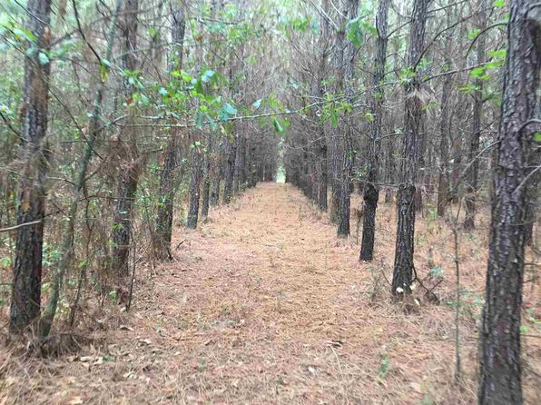 null bed null bath Vacant Land at 0 Tank Rd Terry, MS, 39170 is for sale at 200k - 1 of 7