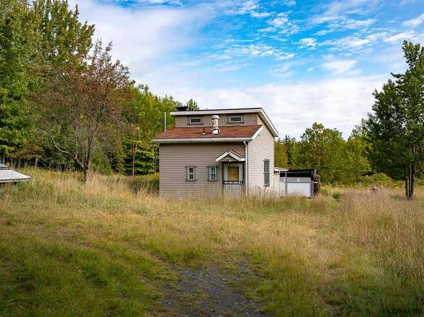 Awesome Schoharie County Real Estate Schoharie County Ny Homes For Download Free Architecture Designs Jebrpmadebymaigaardcom