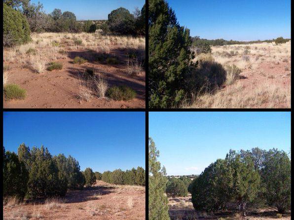 Raw Land Acreage - Concho Real Estate - Concho AZ Homes For