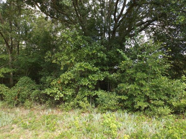 null bed null bath Vacant Land at 0000 Southwest Dr Donalsonville, GA, 39845 is for sale at 12k - 1 of 4