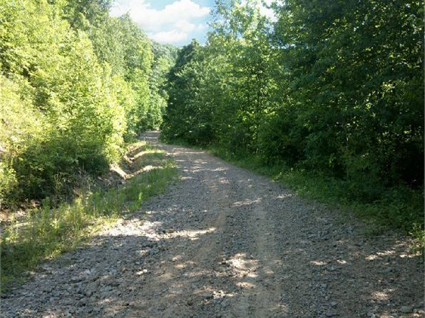 null bed null bath Vacant Land at 1443 Big Trace Fork Rd Harts, WV, 25524 is for sale at 129k - 1 of 10