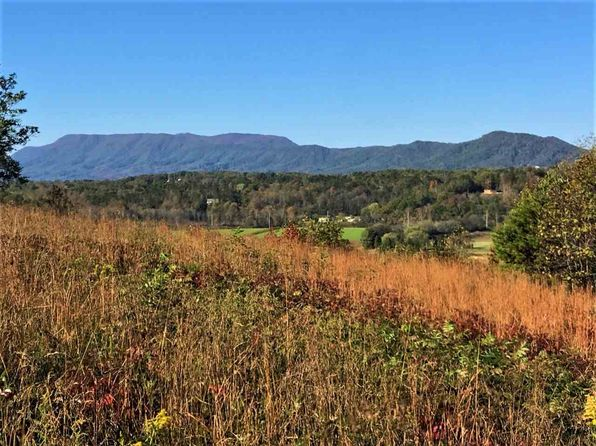 null bed null bath Vacant Land at  N/A Old Edwina Rd Newport, TN, 37821 is for sale at 70k - 1 of 19