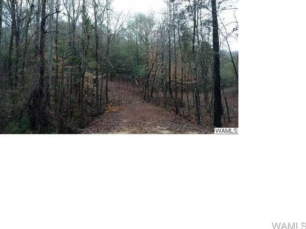 null bed null bath Vacant Land at 00 Hagler Mill Rd Northport, AL, 35475 is for sale at 30k - 1 of 2