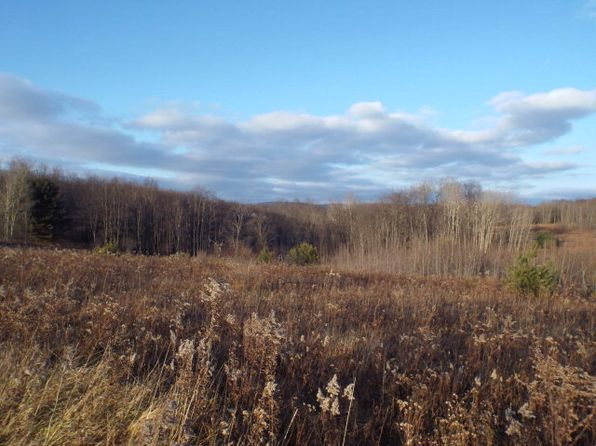 null bed null bath Vacant Land at 00 Bush Hill Rd Austin, PA, 16720 is for sale at 158k - 1 of 8