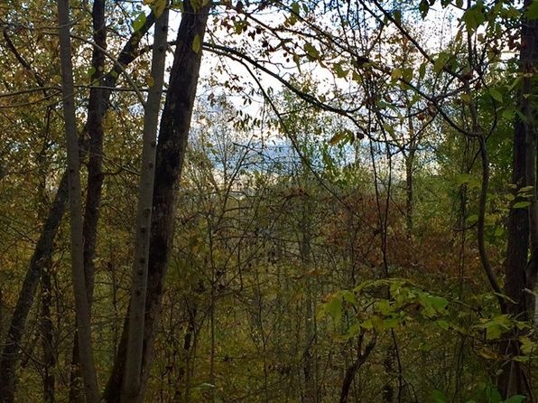 null bed null bath Vacant Land at  Coppermine Rdg Whittier, NC, 28789 is for sale at 15k - 1 of 8
