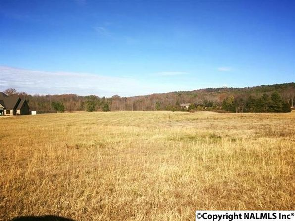 null bed null bath Vacant Land at  Red Bank Rd SE Decatur, AL, 35603 is for sale at 81k - google static map