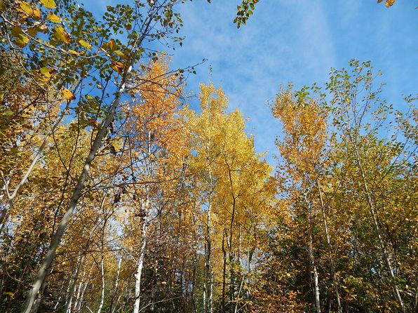 null bed null bath Vacant Land at 55 Marks Dr Silver Bay, MN, 55614 is for sale at 22k - 1 of 36