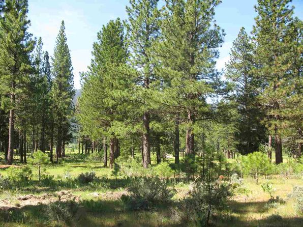 null bed null bath Vacant Land at 581 REDTAIL LOOP RD CLIO, CA, 96106 is for sale at 279k - 1 of 20