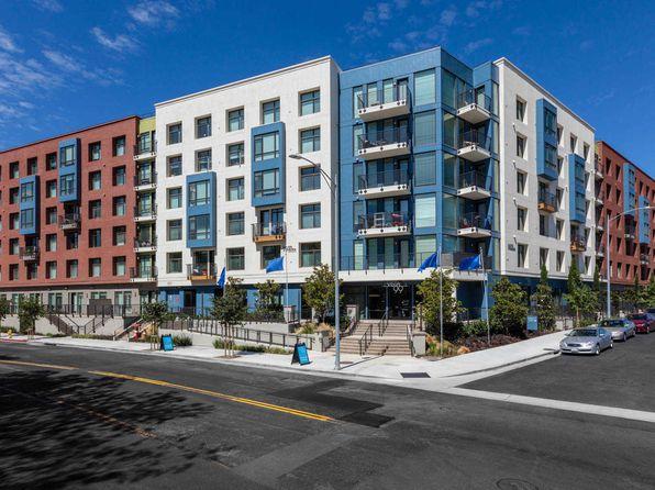 San Jose CA Pet Friendly Apartments & Houses For Rent ...