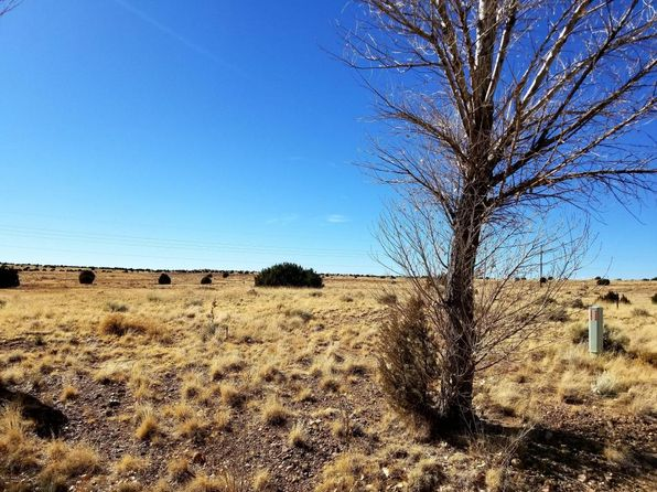 null bed null bath Vacant Land at  Lot 4 Taylor Farms Taylor, AZ, 85939 is for sale at 39k - 1 of 4