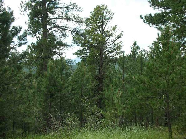 null bed null bath Vacant Land at  Yellow Creek Rd Lead, SD, 57754 is for sale at 90k - 1 of 2