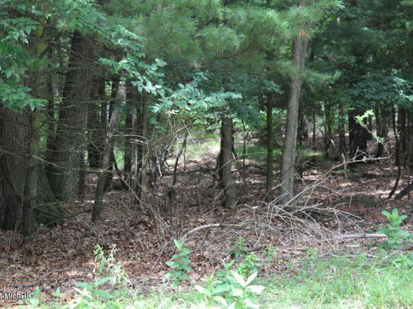 null bed null bath Vacant Land at 0 Roberts St Montague, MI, 49437 is for sale at 25k - 1 of 2