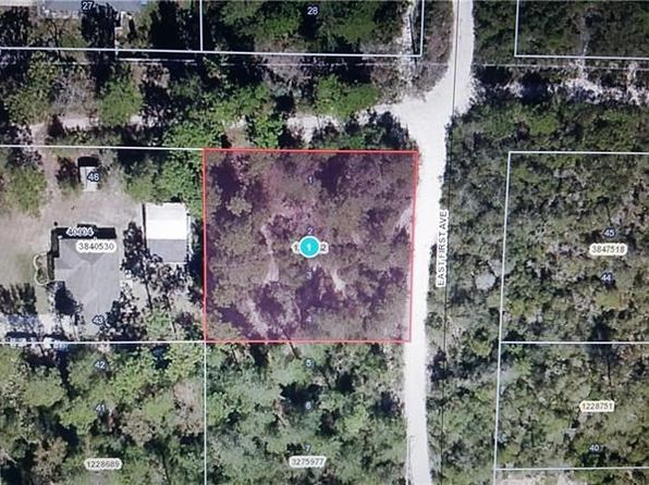 null bed null bath Vacant Land at  E First Ave Umatilla, FL, 32784 is for sale at 20k - google static map