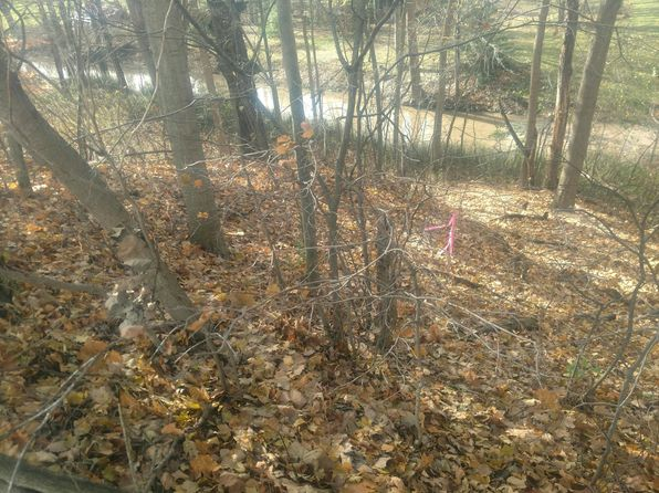 null bed null bath Vacant Land at 4154 MEYER DR HAMILTON, MI, 49419 is for sale at 44k - google static map
