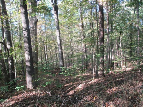 null bed null bath Vacant Land at 0000 Bluff Ln Goreville, IL, 62939 is for sale at 48k - 1 of 11
