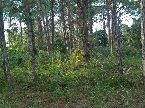 null bed null bath Vacant Land at 951 PANDORA RD SE PALM BAY, FL, 32909 is for sale at 13k - google static map