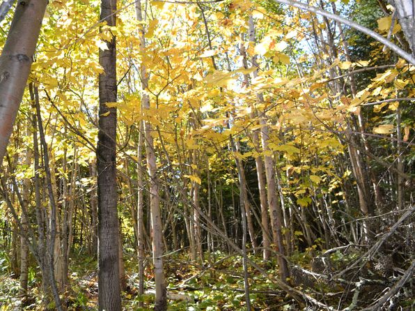 null bed null bath Vacant Land at 1XX E 5th St Grand Marais, MN, 55604 is for sale at 60k - 1 of 40