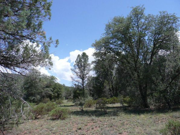 null bed null bath Vacant Land at 243 W Westridge Rd Young, AZ, 85554 is for sale at 40k - 1 of 13