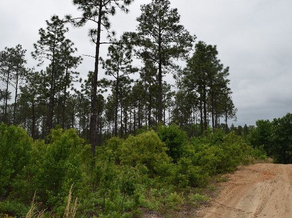 null bed null bath Vacant Land at 19.29 Ac Edgefield Hwy Aiken, SC, 29847 is for sale at 69k - 1 of 6