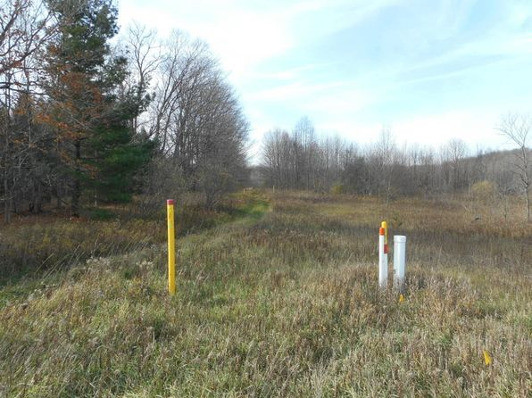 null bed null bath Vacant Land at 9540 Chief Rd Bear Lake, MI, 49614 is for sale at 20k - 1 of 8