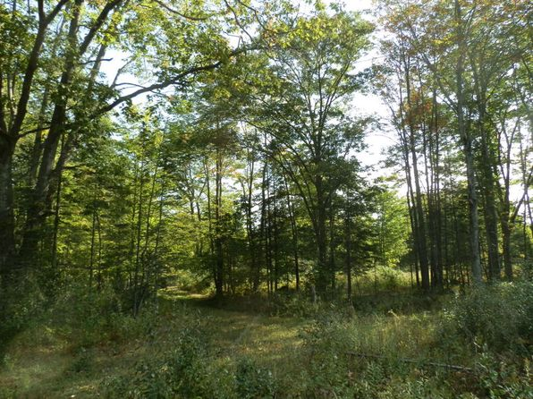 null bed null bath Vacant Land at US-23 011-022-000-501-05 Ossineke, MI, 49766 is for sale at 95k - 1 of 13