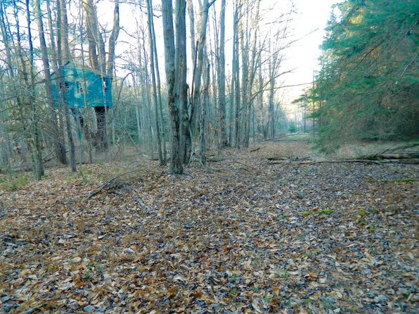 null bed null bath Vacant Land at 0 North St Shunk, PA, 17768 is for sale at 25k - 1 of 9