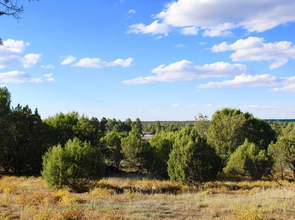 null bed null bath Vacant Land at 1581 N 22nd Ave Show Low, AZ, 85901 is for sale at 139k - 1 of 9