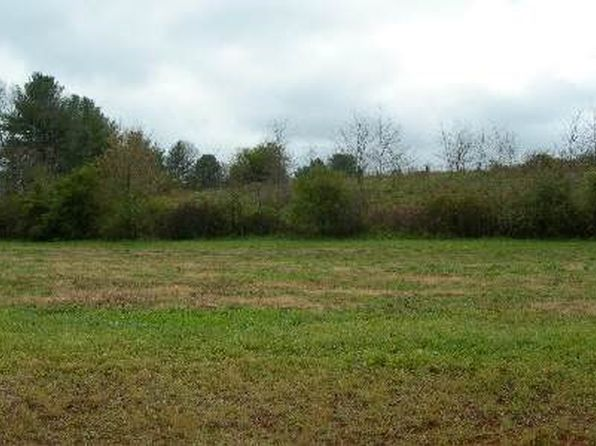 null bed null bath Vacant Land at  Lot 20 McGlamery Hayesville, NC, 28904 is for sale at 59k - google static map