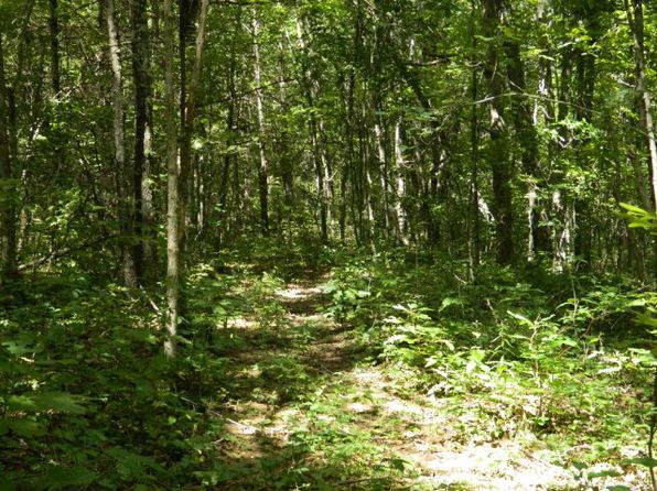 null bed null bath Vacant Land at 371 Maplewood Rd Princeton, WV, 24740 is for sale at 65k - 1 of 7