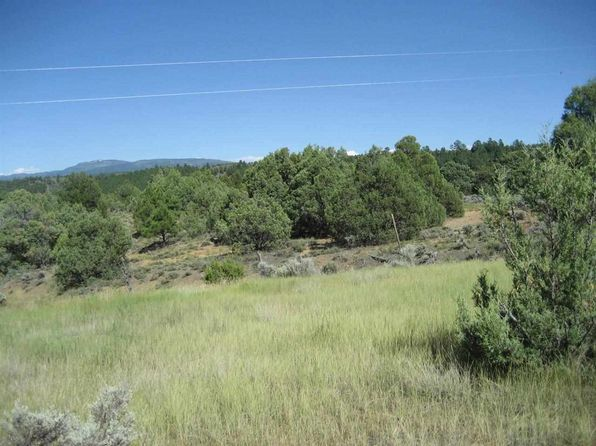 null bed null bath Vacant Land at  Tract B Meneakis Tract Park View Hills Subd Rutheron, NM, 87575 is for sale at 29k - 1 of 7