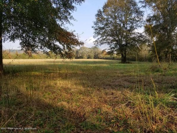 null bed null bath Vacant Land at CO Rd Fayette, AL, 35555 is for sale at 11k - google static map