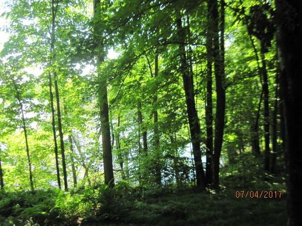 null bed null bath Vacant Land at ON Pine Ln Winter, WI, 54896 is for sale at 42k - 1 of 16