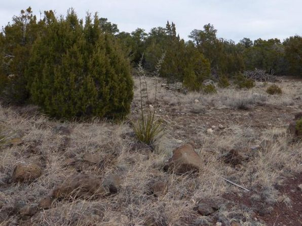 null bed null bath Vacant Land at  Tbd Park Show Low Concho, AZ, 85924 is for sale at 8k - 1 of 5