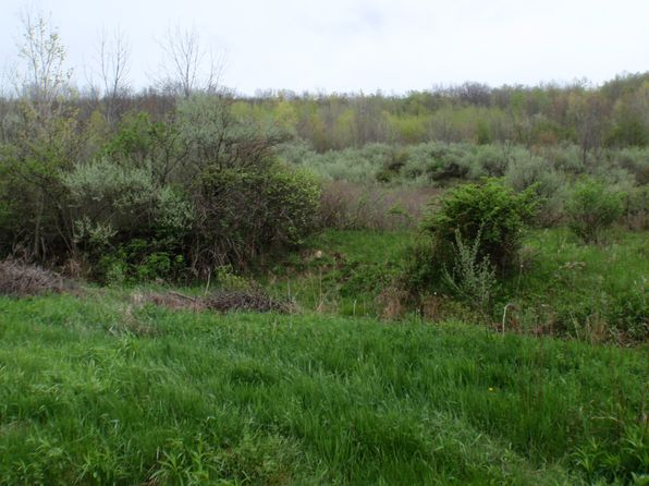 null bed null bath Vacant Land at  Tally Rd Covington, PA, 16917 is for sale at 34k - 1 of 3