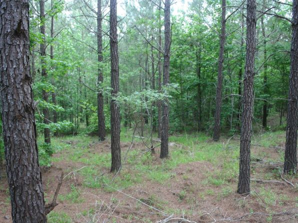 null bed null bath Vacant Land at  Penfield Rd Greensboro, GA, 30642 is for sale at 688k - 1 of 37