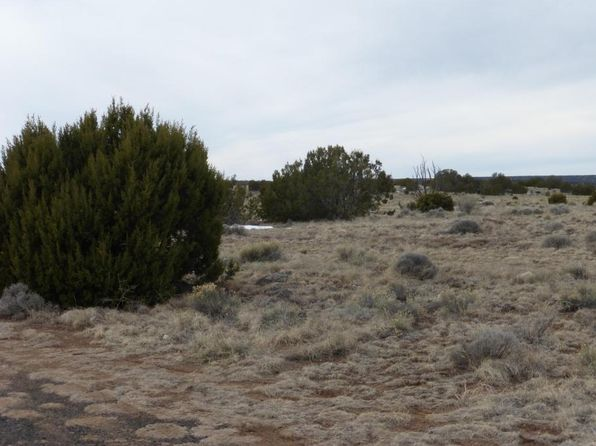null bed null bath Vacant Land at  Tbd Show Low Paradise Concho, AZ, 85924 is for sale at 5k - google static map