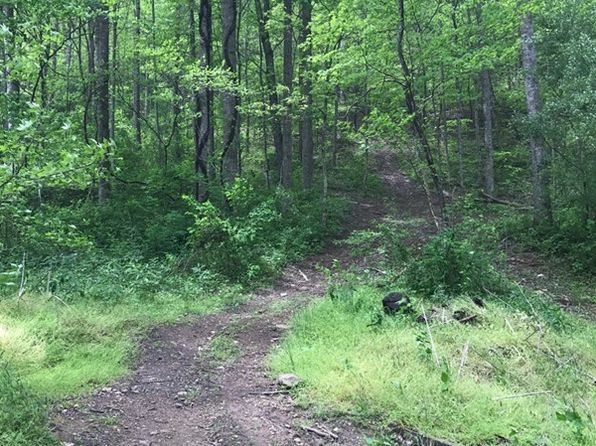 null bed null bath Vacant Land at 0 Keathly Frk Harold, KY, 41635 is for sale at 70k - 1 of 3