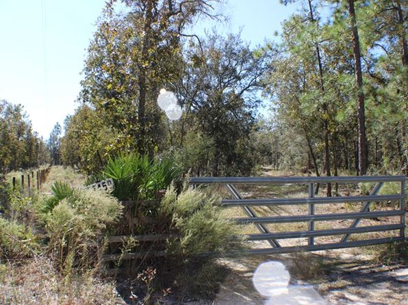 null bed null bath Vacant Land at 11450 NE 50th St Bronson, FL, 32621 is for sale at 55k - 1 of 11