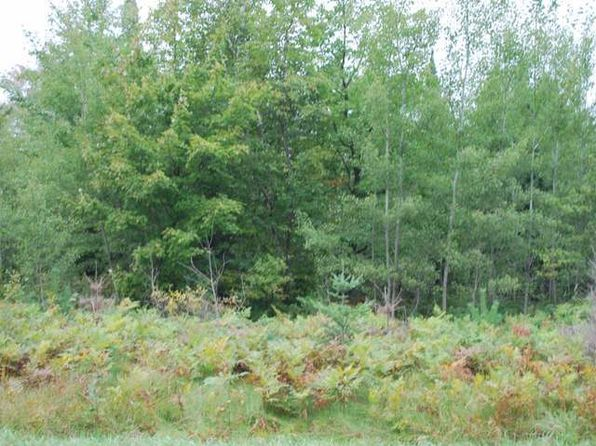 null bed null bath Vacant Land at  Near Old 8 Rd Crandon, WI, 54520 is for sale at 11k - 1 of 7