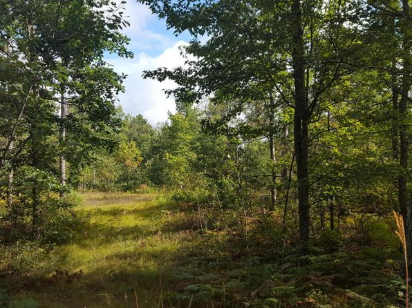 null bed null bath Vacant Land at  Pine Tree Dr Glennie, MI, 48737 is for sale at 7k - 1 of 9