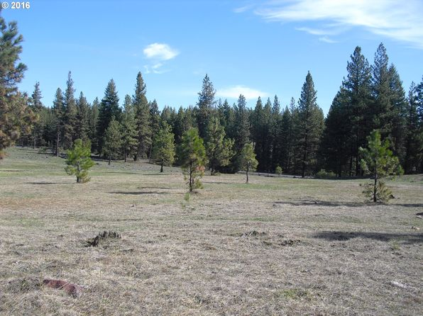 null bed null bath Vacant Land at 70458 Promise Rd Wallowa, OR, 97885 is for sale at 550k - 1 of 27