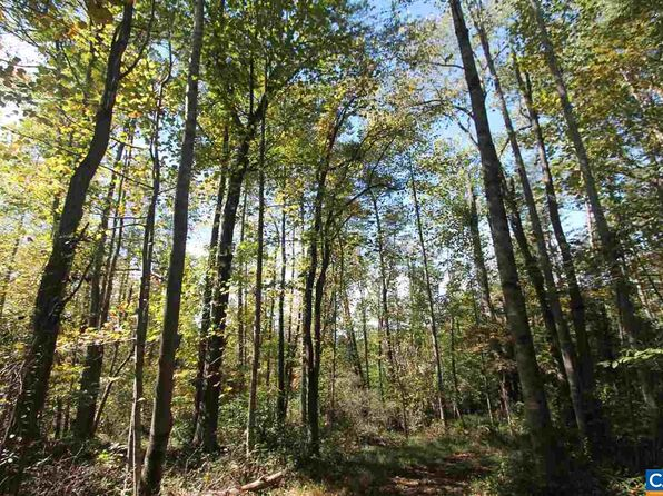 null bed null bath Vacant Land at 00 Ln Ivy, VA, 22945 is for sale at 319k - 1 of 3