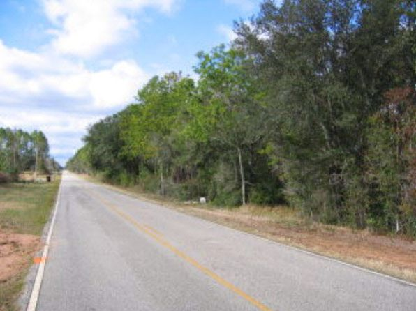 null bed null bath Vacant Land at 24577 County Road 38 Elsanor, AL, 36580 is for sale at 140k - google static map