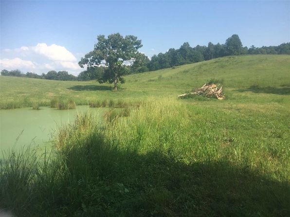 null bed null bath Vacant Land at  ODOM RD RUTLEDGE, TN, 37861 is for sale at 200k - 1 of 24