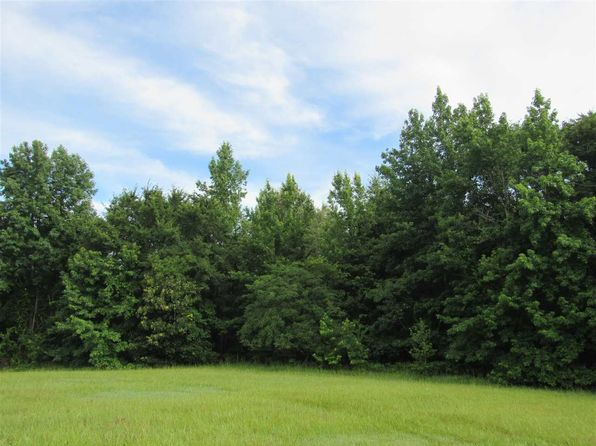 null bed null bath Vacant Land at 0 Walkers Mill Rd Hallsville, TX, 75650 is for sale at 599k - 1 of 18