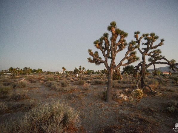 null bed null bath Vacant Land at 3776 Amador Rd Phelan, CA, 92371 is for sale at 35k - 1 of 12