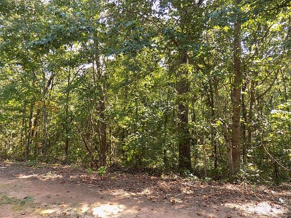 null bed null bath Vacant Land at 40 Coral Dr Whitesburg, GA, 30185 is for sale at 20k - 1 of 6